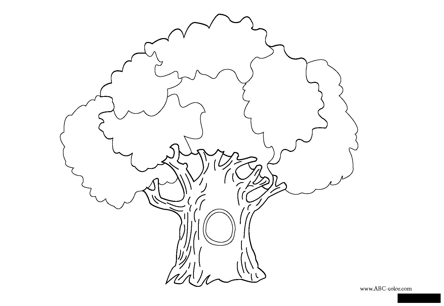 Coloring Trees coloring pages trees, paint nature, oak