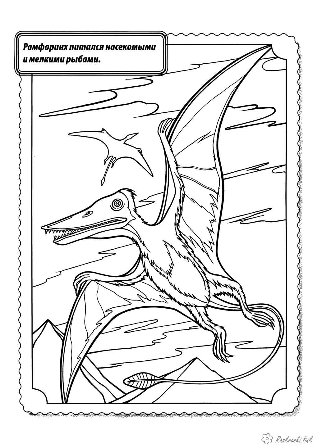 Розмальовки Рептилії Рептилії, динозавр, хижак, літає, рамфоринх