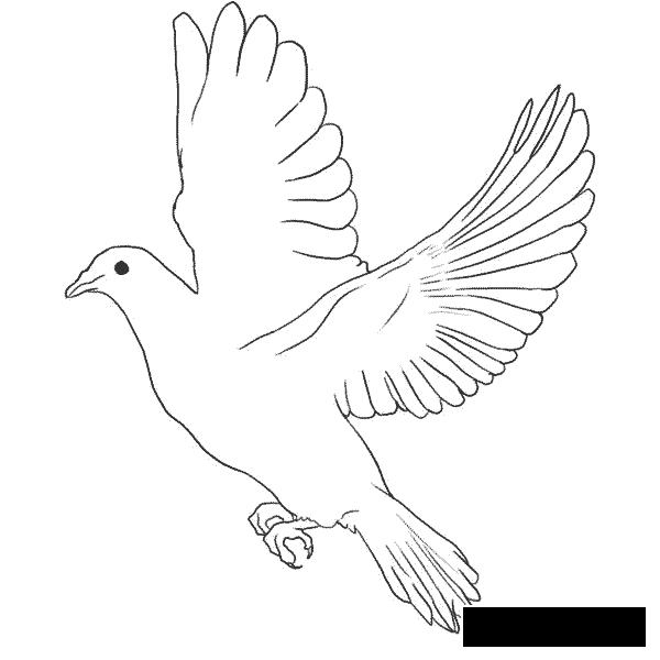 Розмальовки День перемоги 9 травня голуб миру, голуб перемоги летить з розкритими крилами