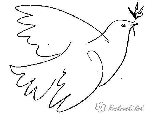 Розмальовки День перемоги 9 травня голуб миру, голуб перемоги летить з гілками