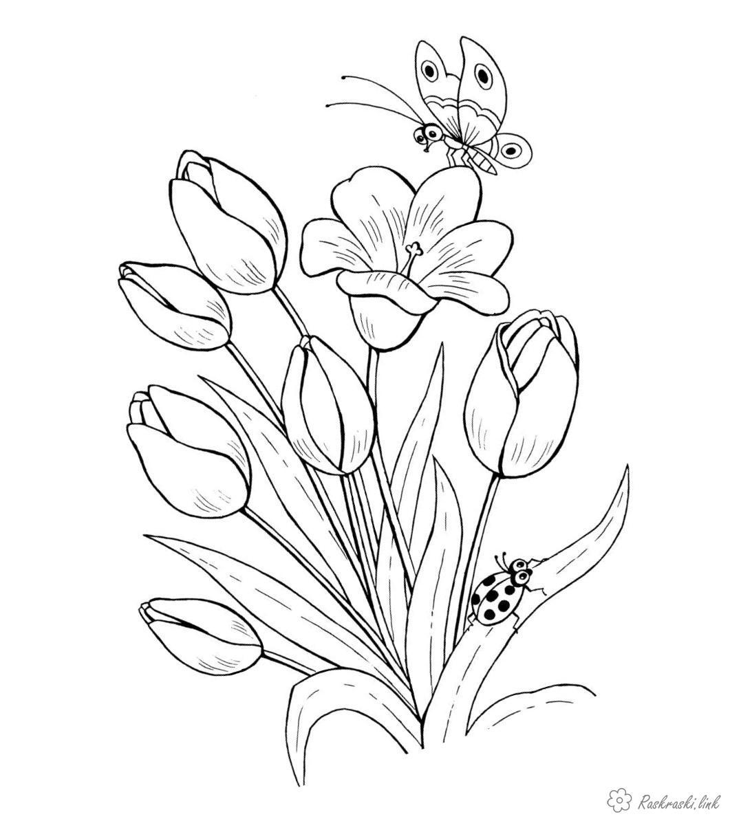 Розмальовки тюльпани Дитяча розфарбування рослини, квіти, тюльпани