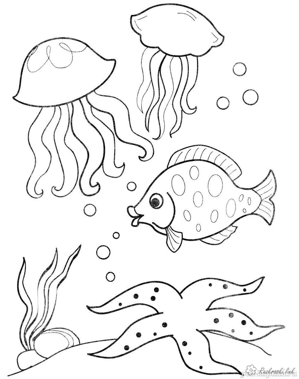 Розмальовки Підводний світ Дитяча розфарбування підводний світ, риби, медузи, рослини