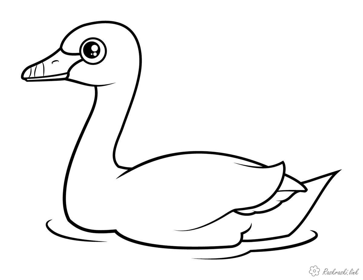 Coloring Simple coloring pages for kids coloring pages duck Easy