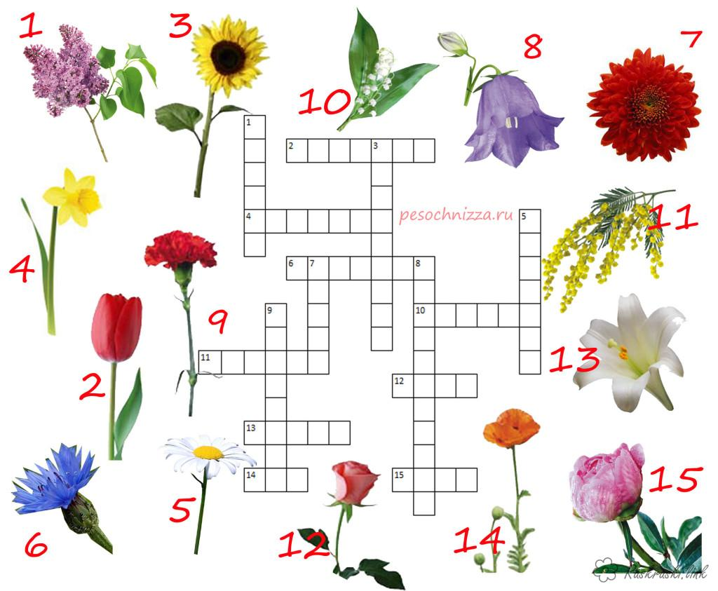 Coloring Crosswords for children Crossword flowers