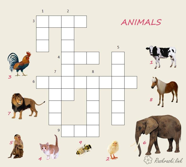 Coloring Crosswords for children Crossword in English crossword animals