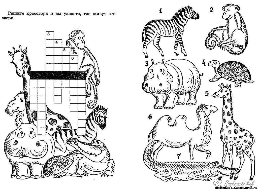 Coloring beasts Crossword animals, crossword animals