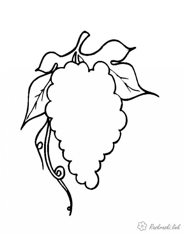 Розмальовки виноград домалюй і розфарбуй, виноград