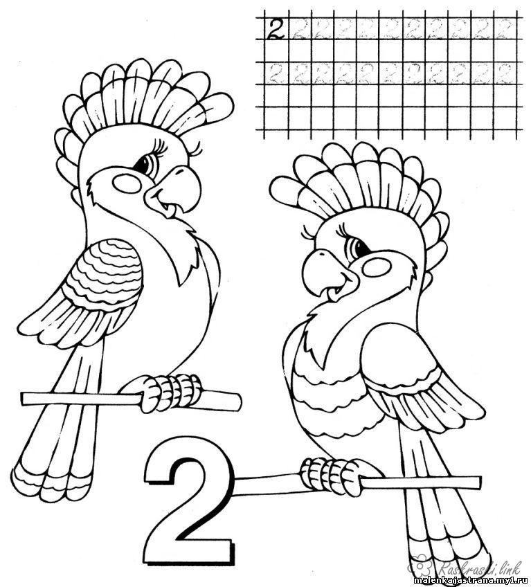 Coloring number We teach numbers, number two, two parrots coloring pages
