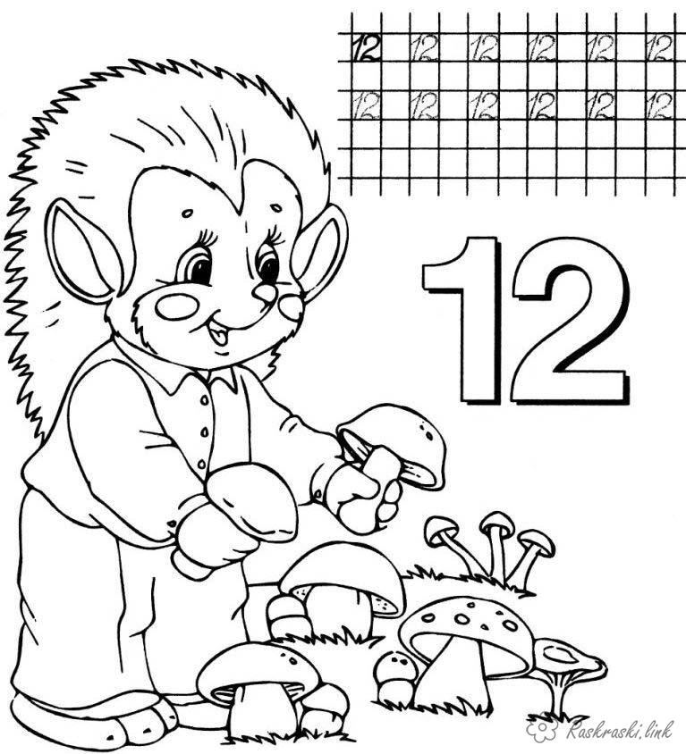 Coloring number Hedgehog and mushrooms coloring pages, prop number 12