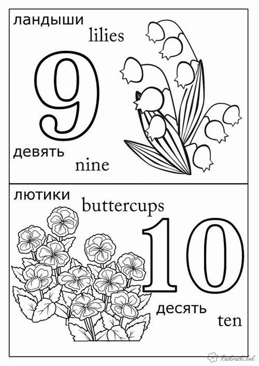 Coloring Learning numbers Lilies of the valley buttercups coloring pages teach numbers nine ten