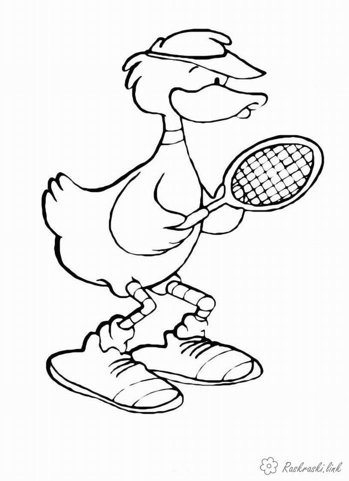 Раскраски теннисист Утка теннисист раскраска, спортивные игры раскраска