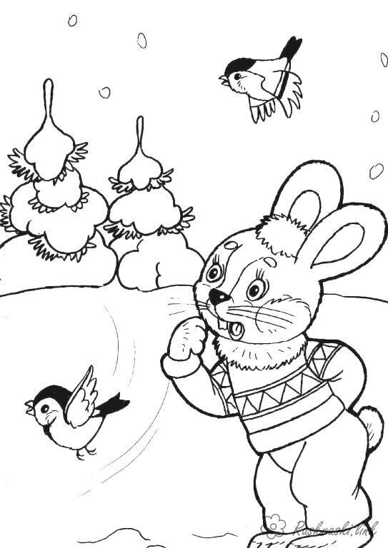 Розмальовки ліс розмальовки, тварини, птахи, заєць, ліс