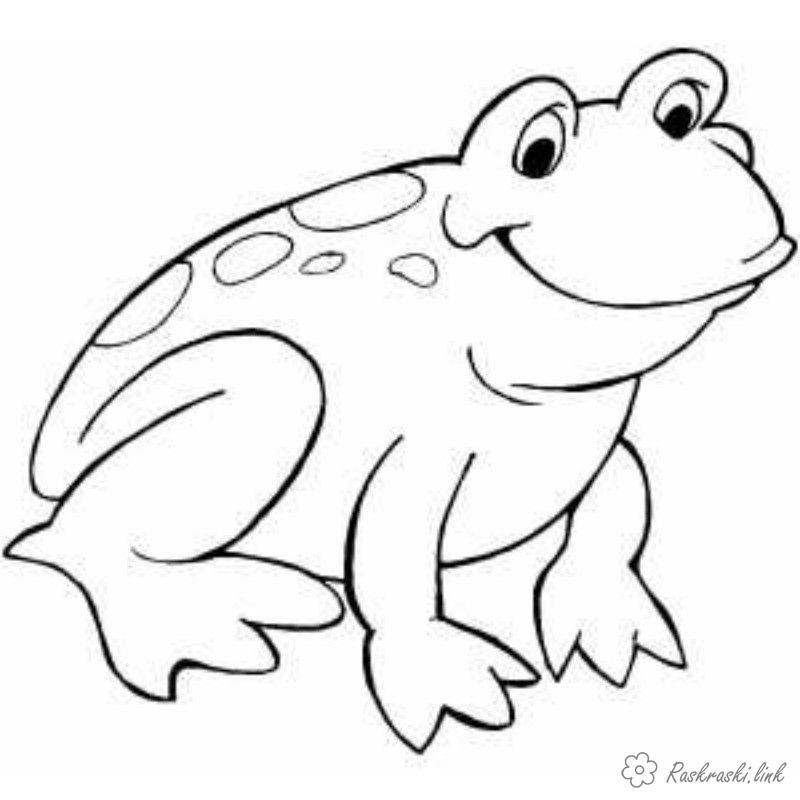 Розмальовки Рептилії розмальовки для дітей, жаба, рептилії