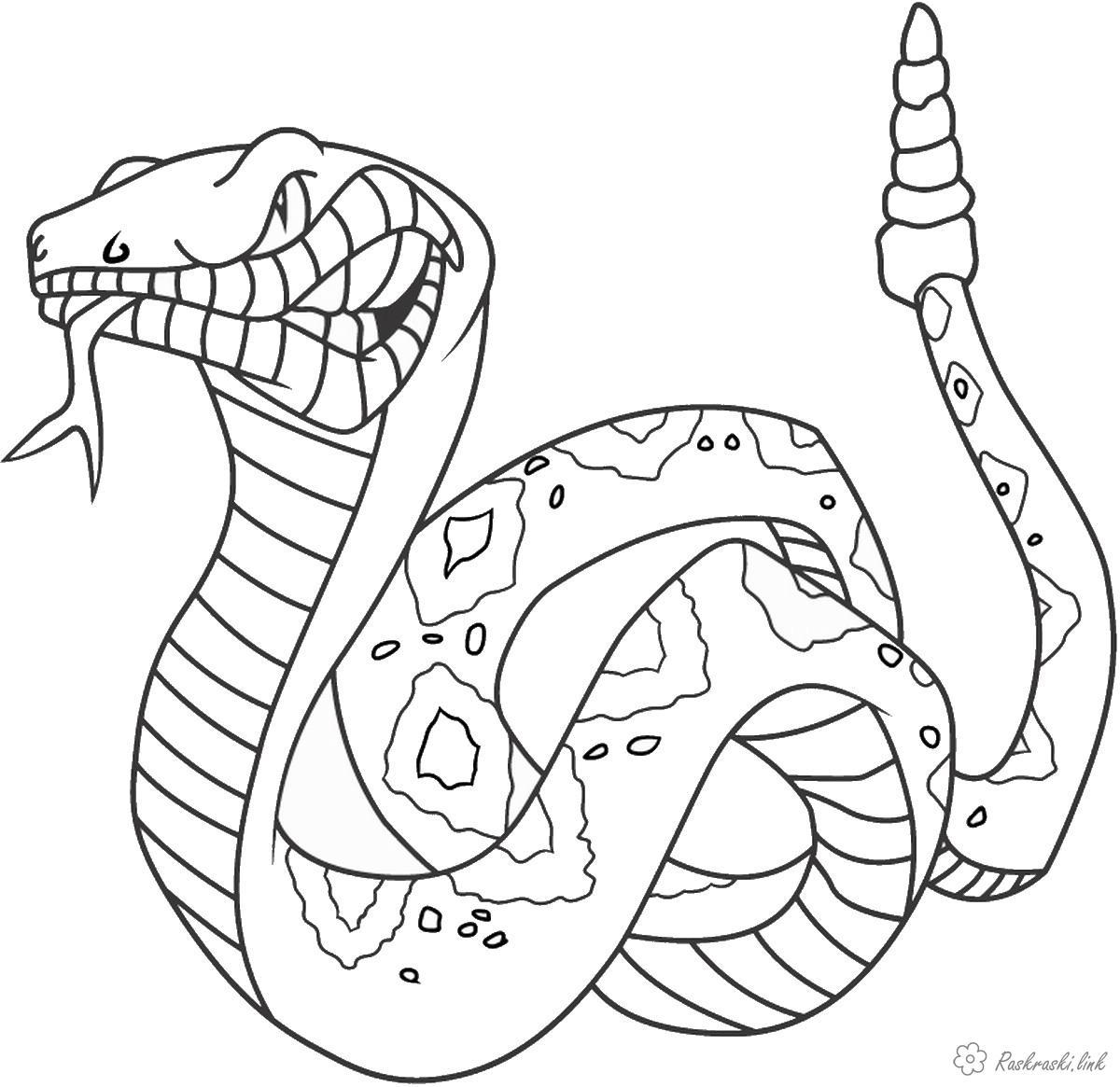 Розмальовки велика розмальовки для дітей, злюща змія, рептилії