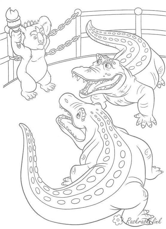 Раскраски Рептилии раскраски, крокодилы, рептилии, коала