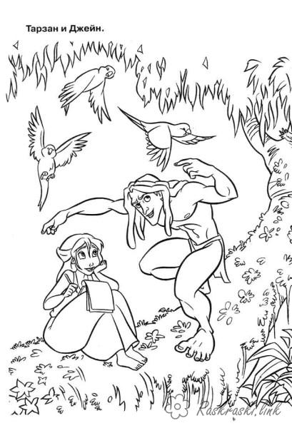 Розмальовки Уолт Дісней тарзан, дерево, дівчина, птахи