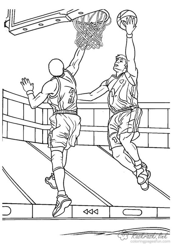 Coloring sports basketball, game, sport