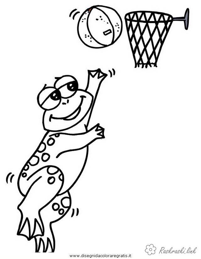 Розмальовки Баскетбол баскетбол, спорт, гра, баскетбол