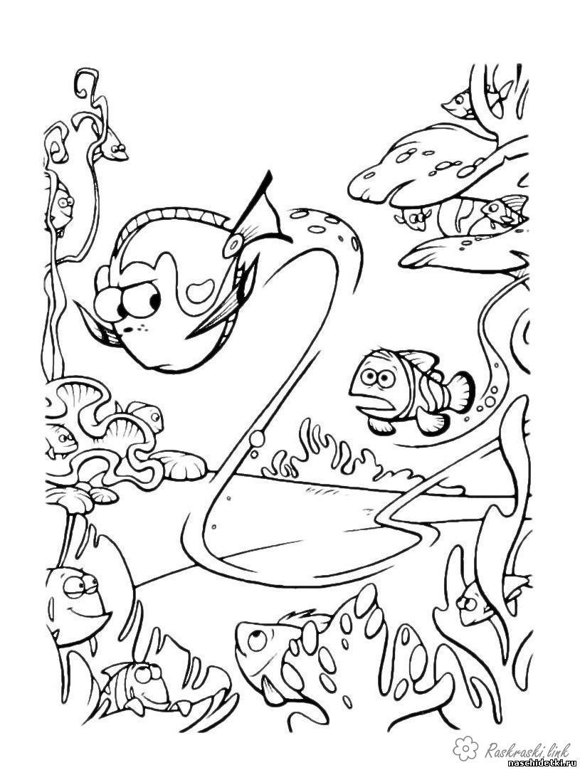 Розмальовки В пошуках Немо в пошуках немо, розфарбування