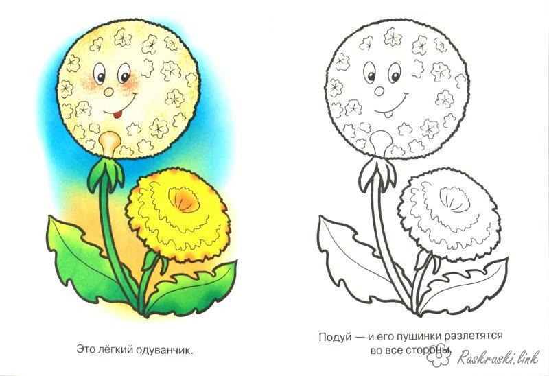 Розмальовки квітка квітка кульбаба розфарбування