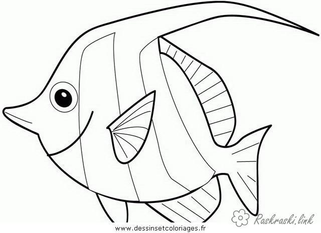 Розмальовки Підводний світ риба рибка природа підводний світ