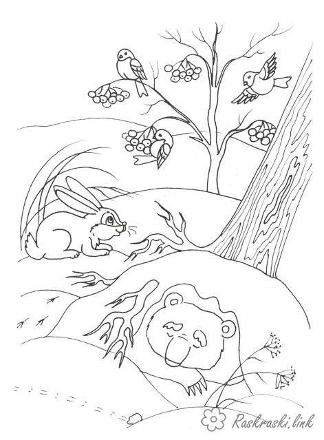 Розмальовки ліс природа явища зима мороз холод ліс