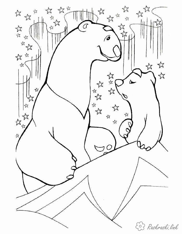Розмальовки північ природа явища природи північне сяйво ведмеді північ