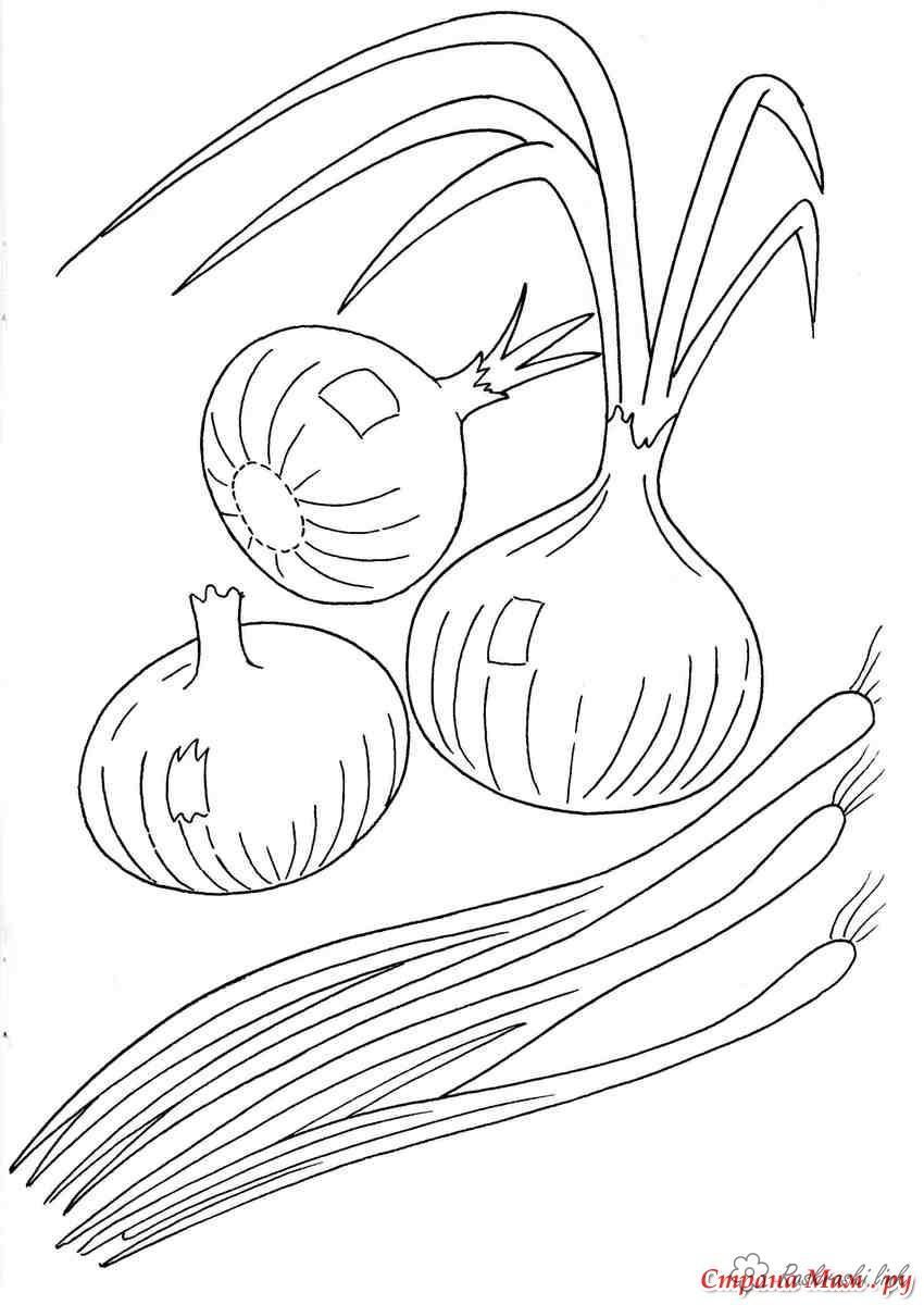 Шаблоны для раскрашивания лук