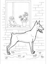 Coloring Dogs doberman puppy, window, flowers, coloring pages