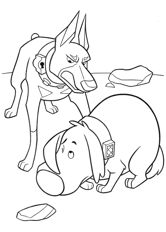Coloring Dogs Dobermann, coloring pages for children, dog