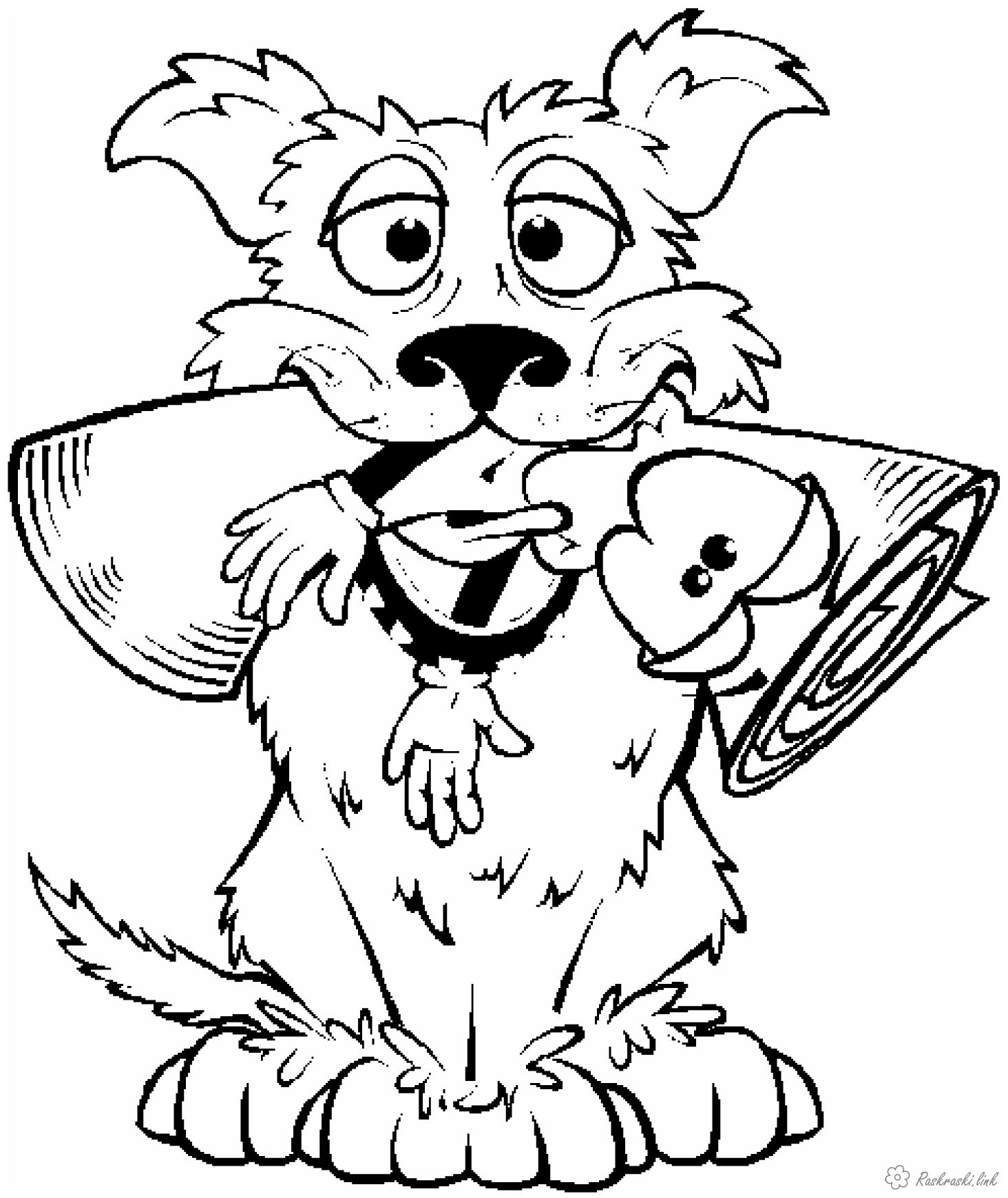 Coloring Dogs russian letter, dog, coloring pages for kids