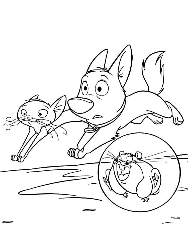 Розмальовки кішка собачка, кішка, бобер, скляну кульку