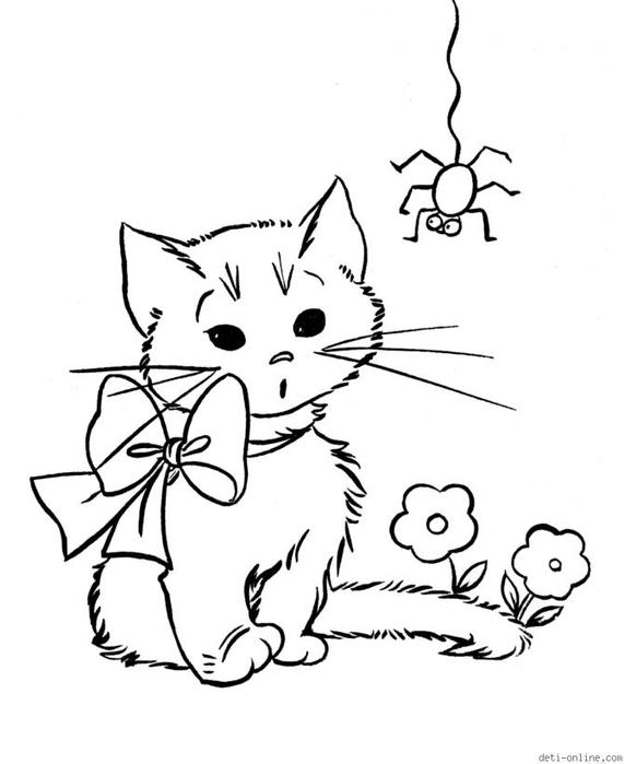 Раскраски котенок раскраски для детей, паучок, для детей