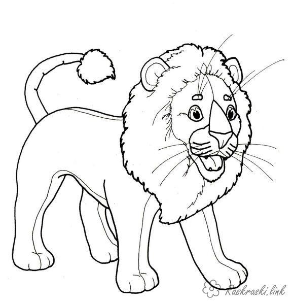 Розмальовки Лев розмальовки левів, грива, для дітей