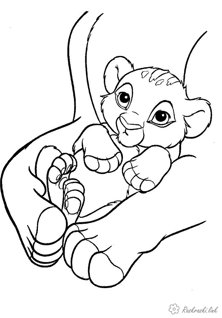 Coloring cub funny little cub, coloring pages for kids