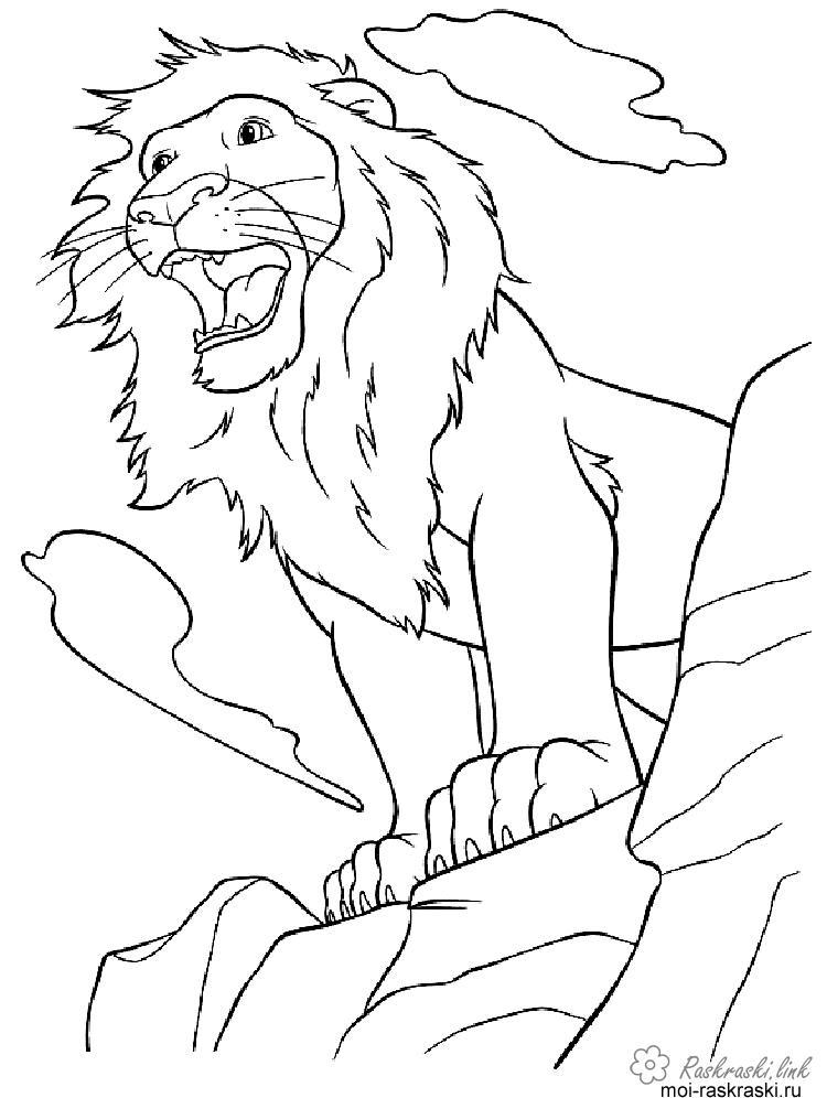 Розмальовки Лев розфарбування для дітей, грізний лев, гарчить, скеля