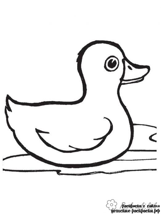 Coloring duckling coloring pages ducklings, duck, duck, water