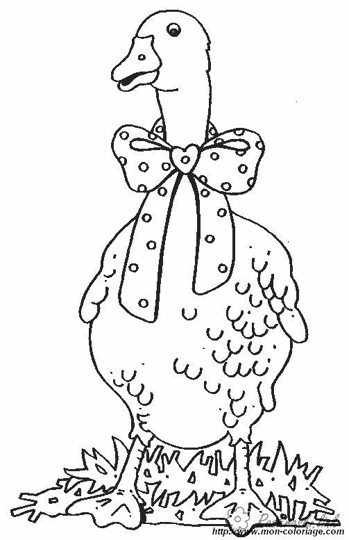 Coloring Geese Goose, bow, coloring pages for kids