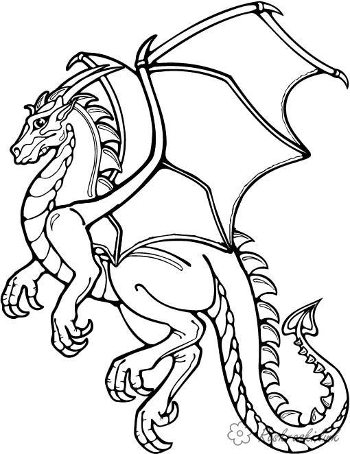 Coloring  Dragons
