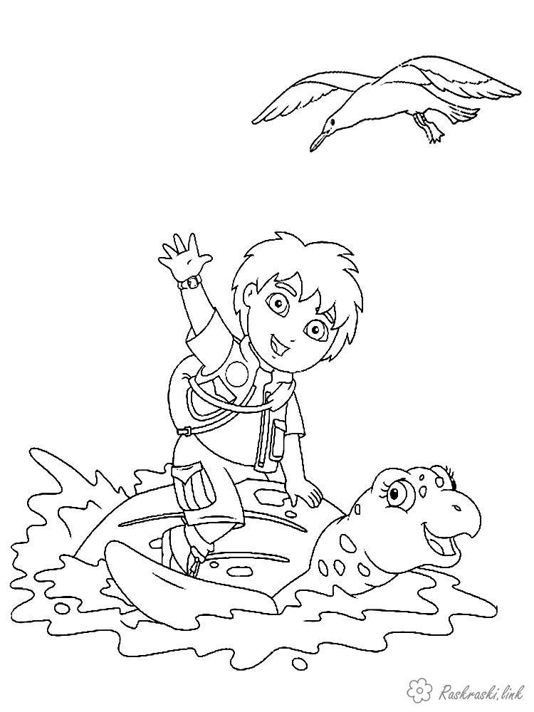 Coloring Shutting Diego bird, turtle