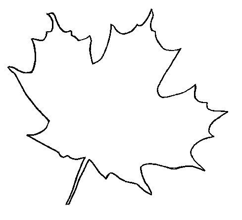 Coloring The leaves of trees Canadian maple