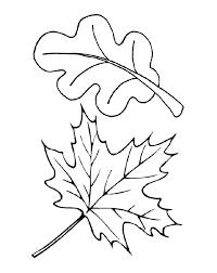 Coloring The leaves of trees maple and oak leaves