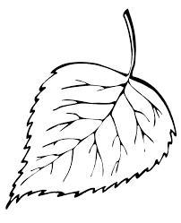 Розмальовки трафарет лист берези