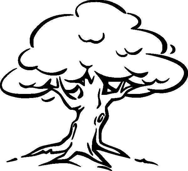 Coloring Trees for cutting paper coloring pages tree with a dense crown