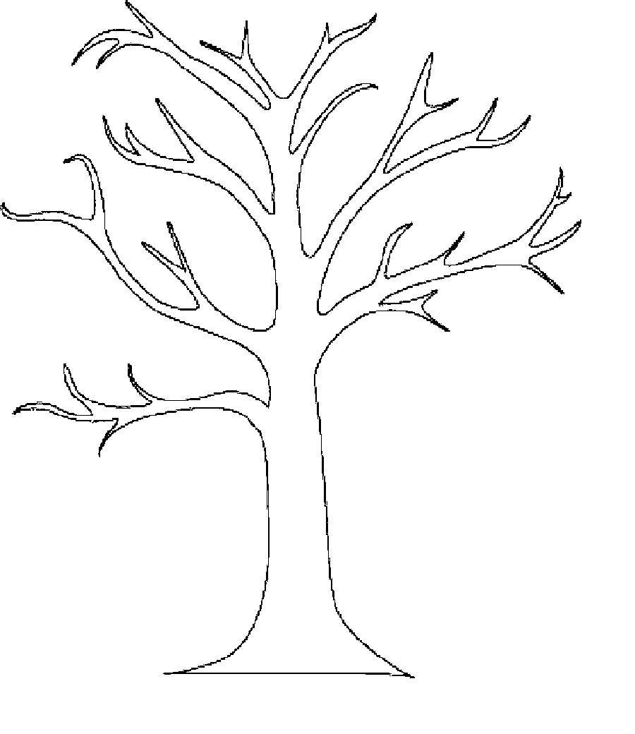 дерева Раскраски распечатать бесплатно.