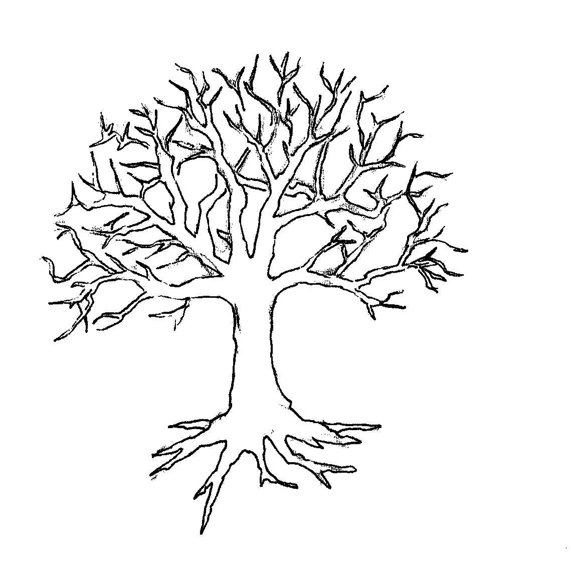 Розмальовки Дерева без листя аплікація дерево без листя