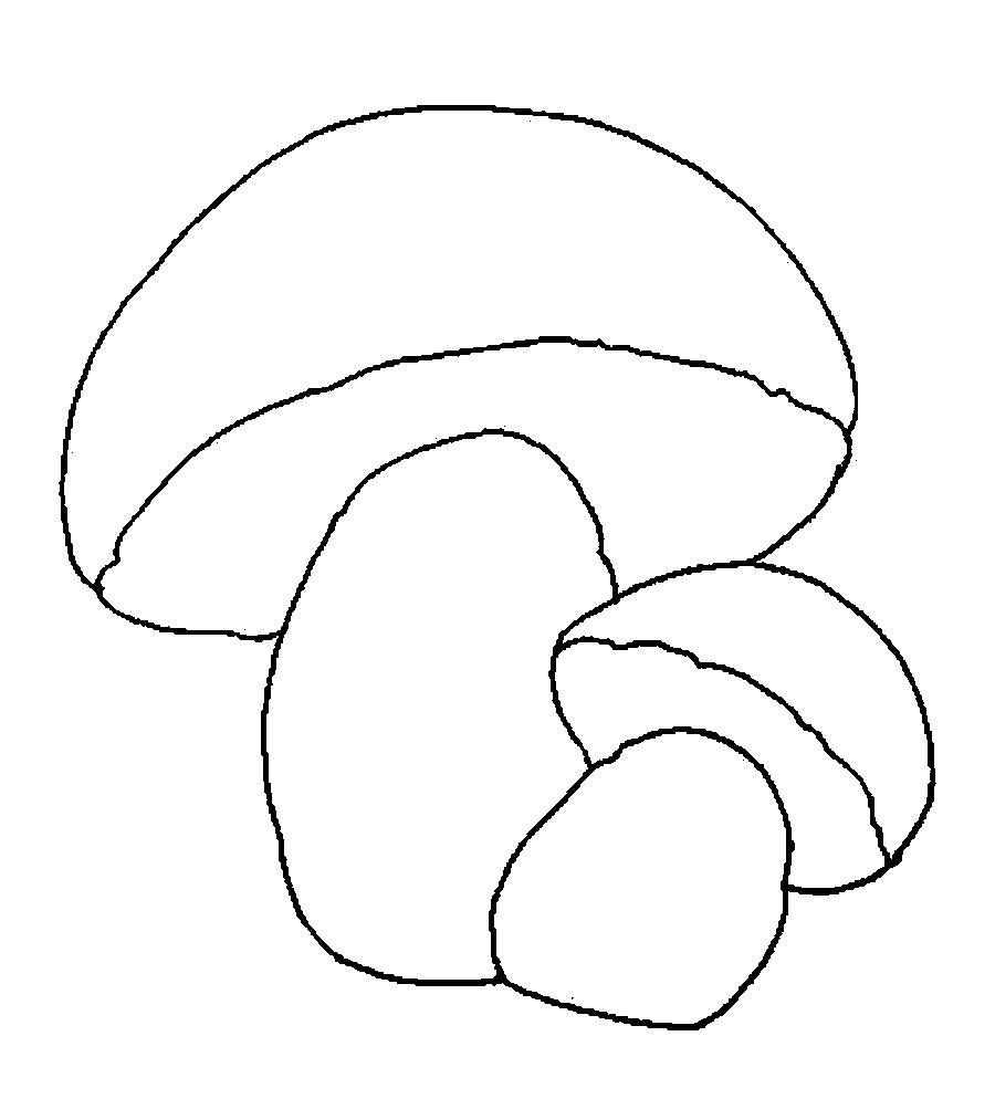 Розмальовки шаблон гриба два гриби шаблон, заготівля з паперу для дітей