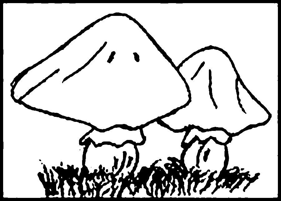 Coloring Pattern fungus mushrooms contours, coloring pages, craft templates