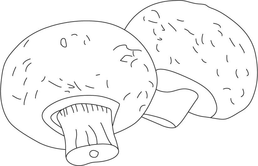 Coloring Pattern fungus large mushrooms, template for craft paper