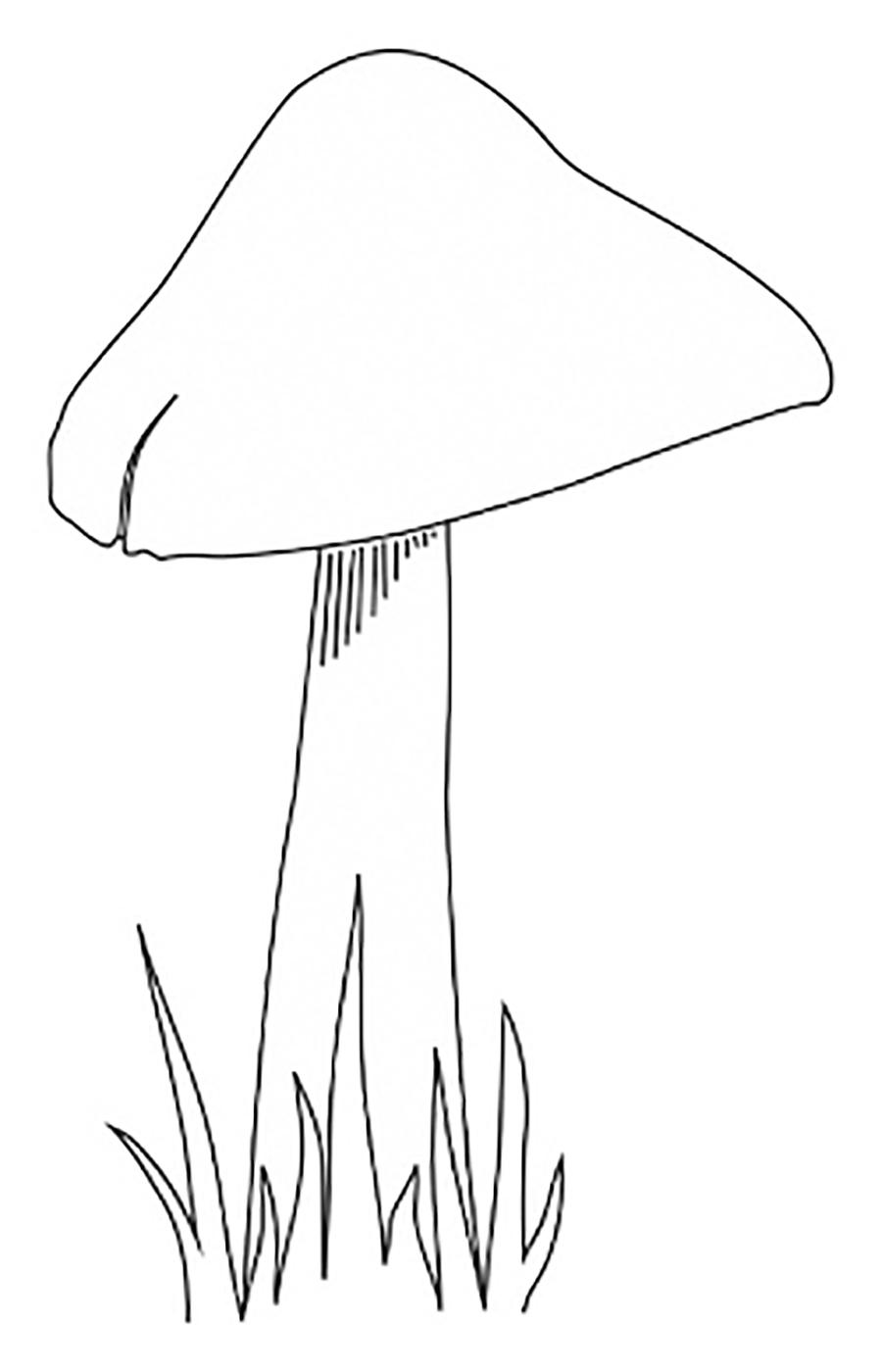 Coloring Pattern fungus mushroom on a thin stalk for cutting paper